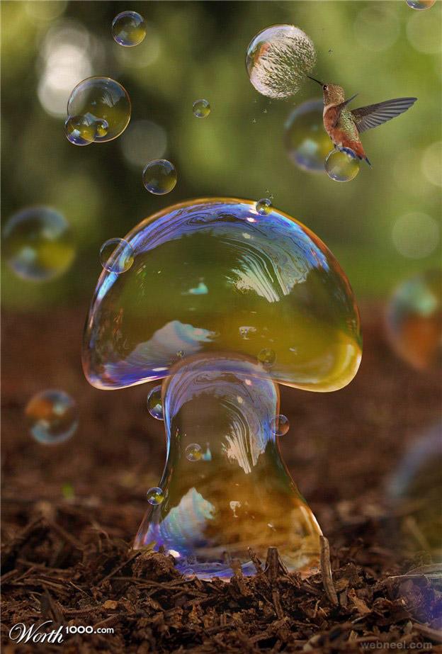 Water mushroom photo manipulation by brunosousa
