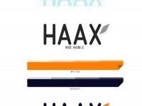 35-haax-branding-identity-design