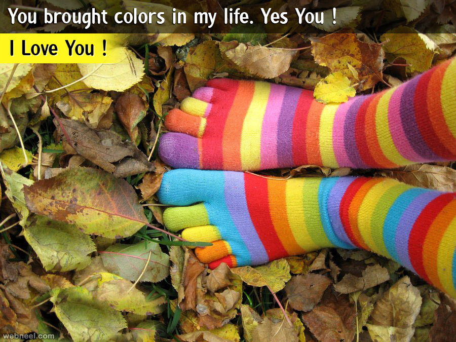 life quotes colors