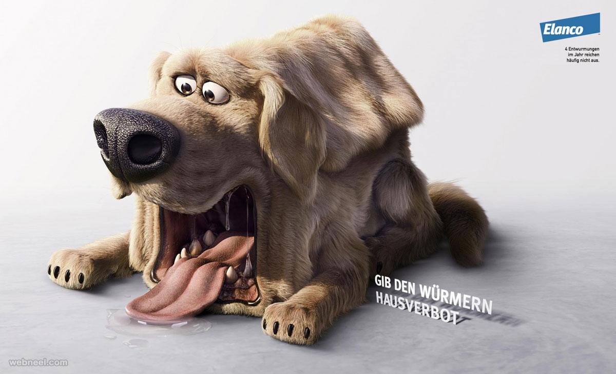 print advertising idea dog
