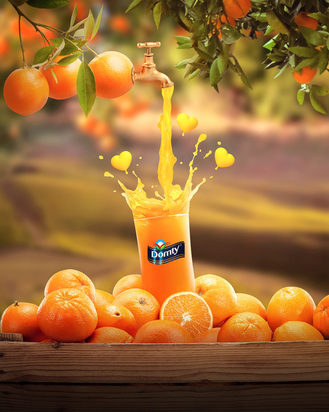 advertising design idea domty orange juice