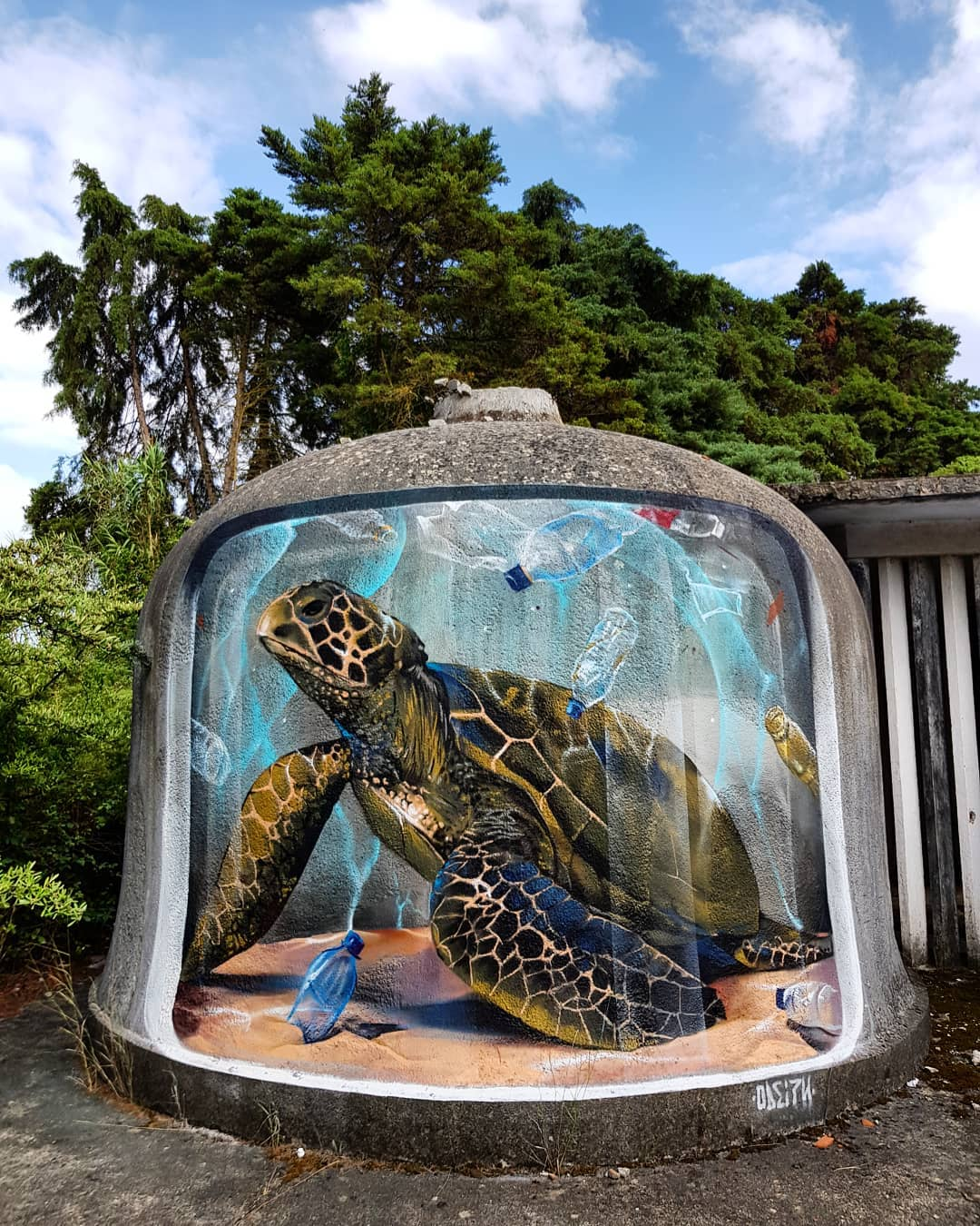3d street art turtle by odeith
