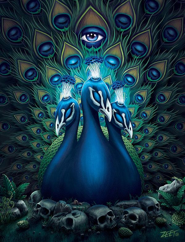 digital art peacock by paul zeatier