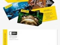 10-national-geographic-best-branding-design