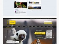12-national-geographic-best-branding-design