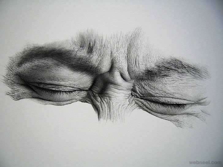 Realistic pencil drawing realistic pencil drawing realistic pencil drawing