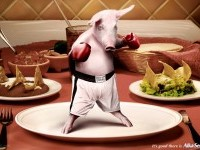 16-Boxer-Pig-creative-animal-ads-Alka Seltzer