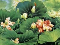 13-chinese-painting-lotus