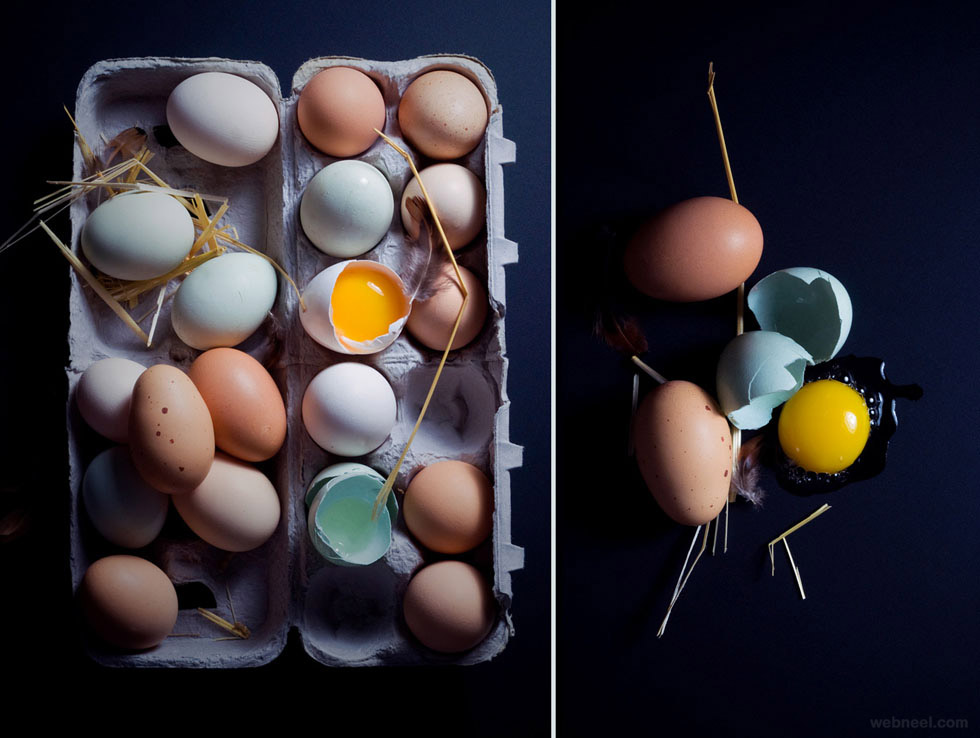still life photography egg food