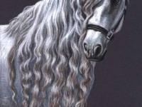 7-animal-horse-drawings-nicolezeug