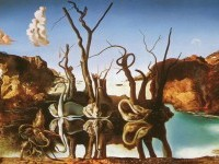2-reflection-elephants-illusion-paintings-by-salvador-dali