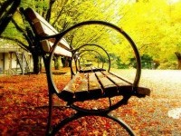 3-amazing-photography-park