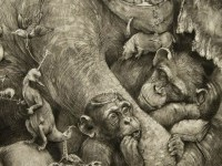 2-amazing-drawing-elephant-mural-by-adonna