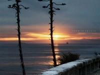 4-nature-photography-pedraterrinha