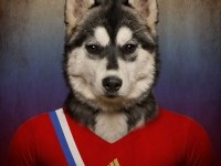 6-photo-manipulation-soccer-nations-dogs