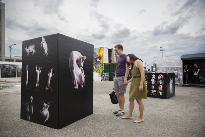 photoville photography festival alicia rhyus