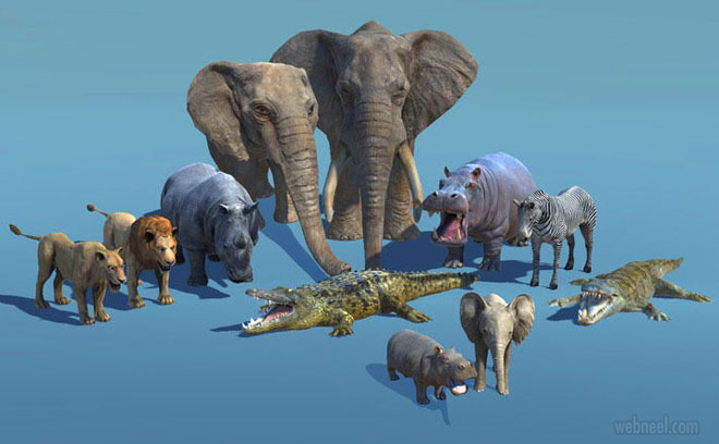 3d models african animals