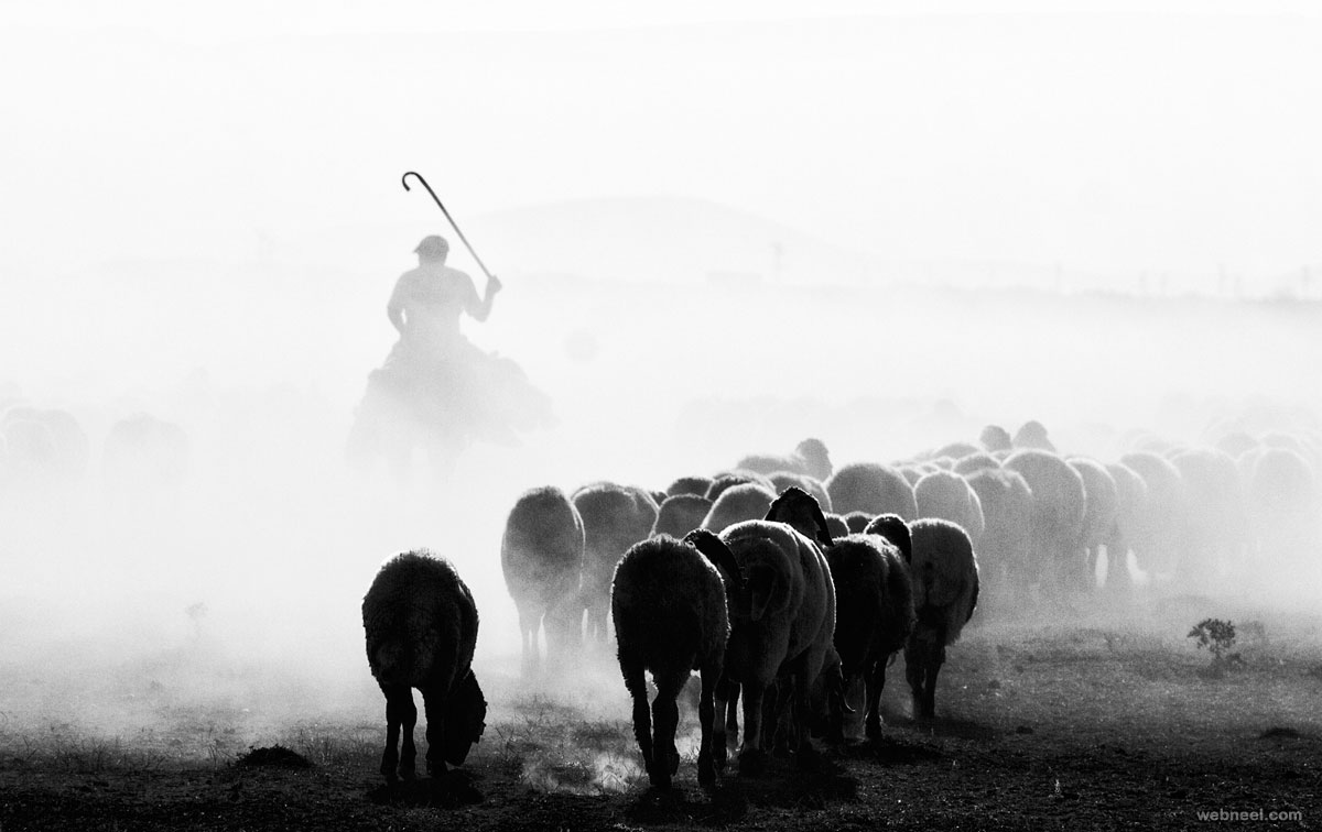 black and white photography by feyzullah tunc