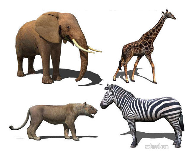 3d models animals low poly