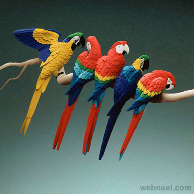 color paper sculpture parrot calvin nicholls