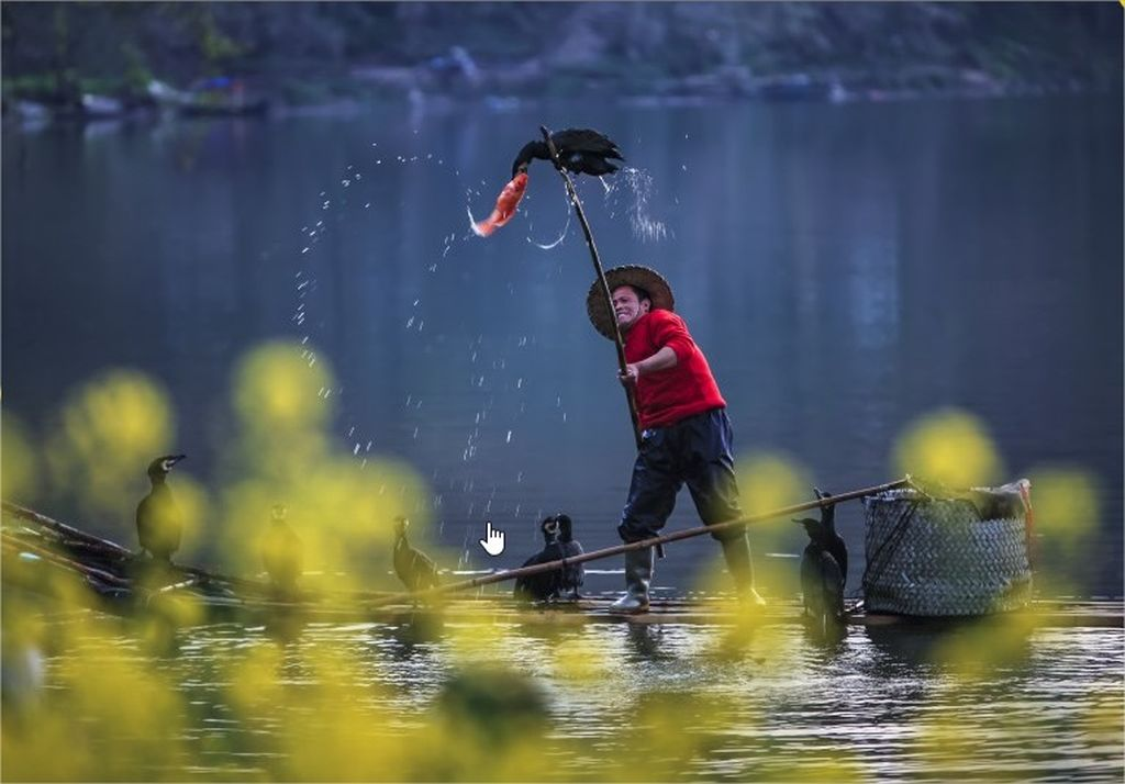 10-hamdan-international-photography-award-by-bin-zhao