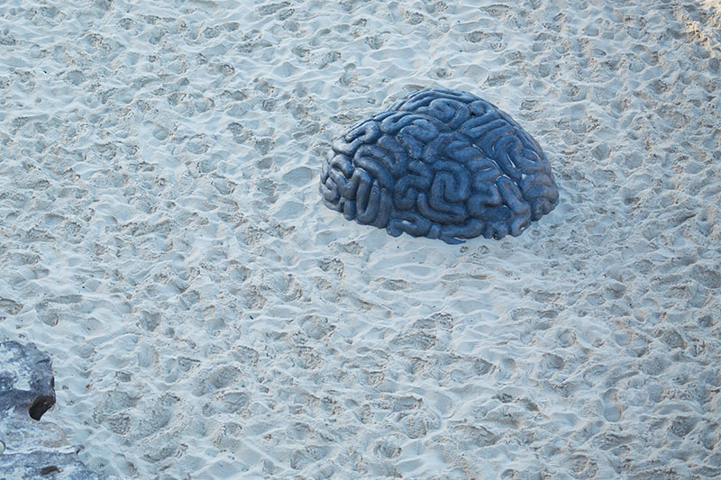 4-brain-sculpture-by-the sea-by-kathy-holowko