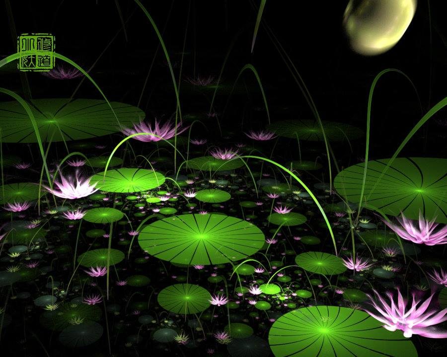 4-lotus-digital-art-by-fractist