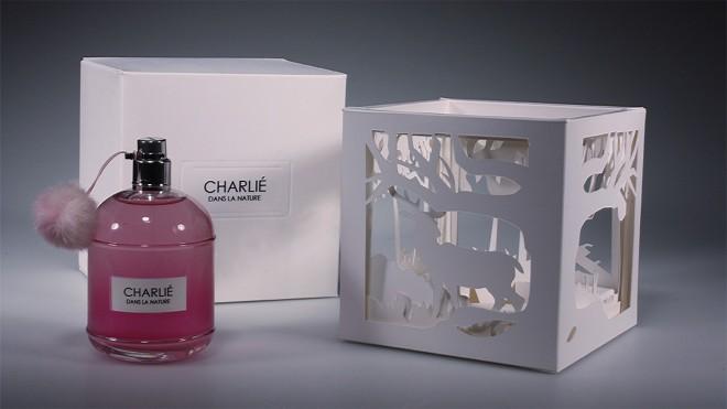 6-perfume-packaging-design-by-charlie