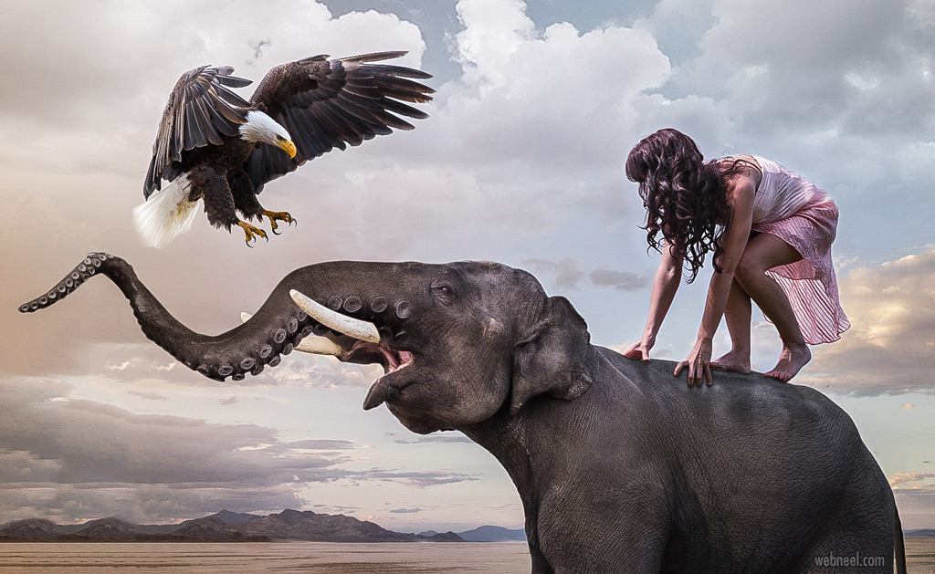 photo manipulation elephant animal by dikshitcherwoo