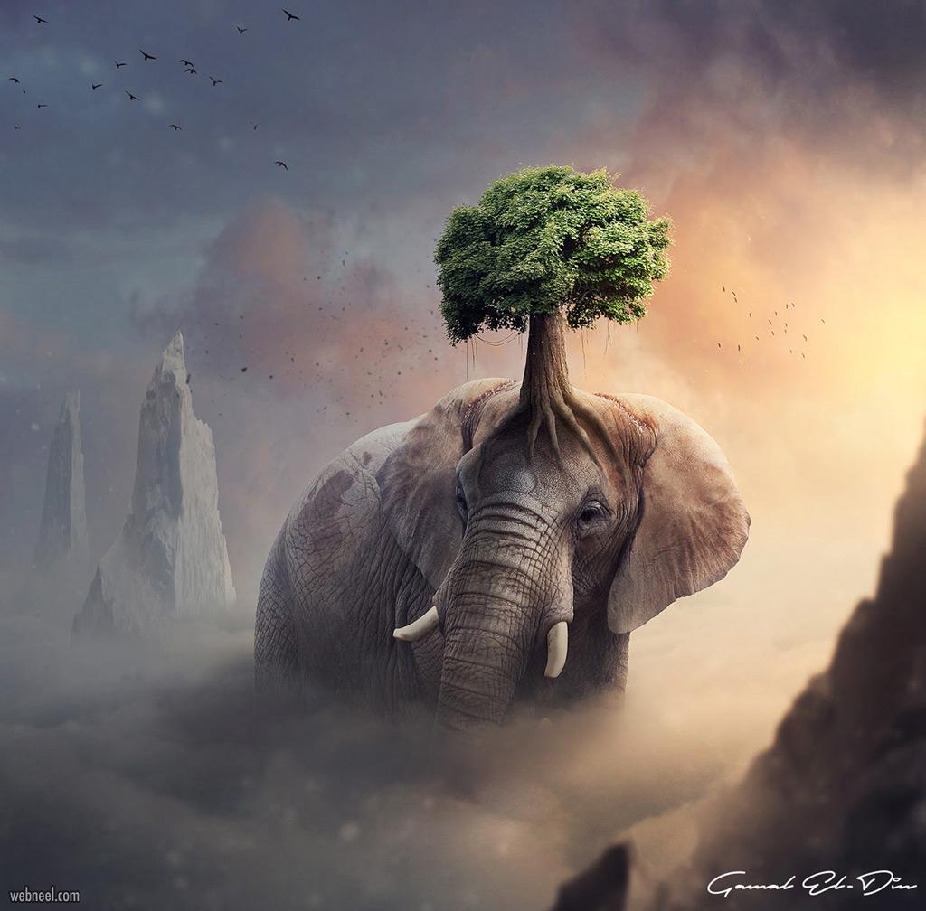 photo manipulation elephant