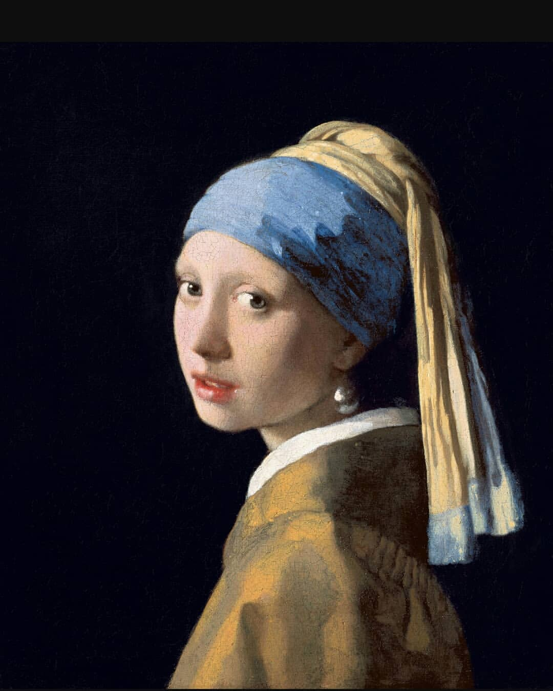 famous oil painting girl with pearl earring by johannes
