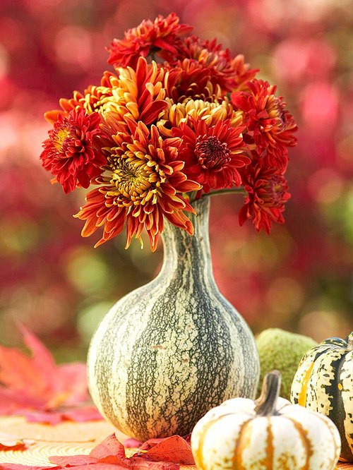 Amazing Vase Creative vegetable art beautiful
