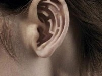 4-photo-manipulation-ear