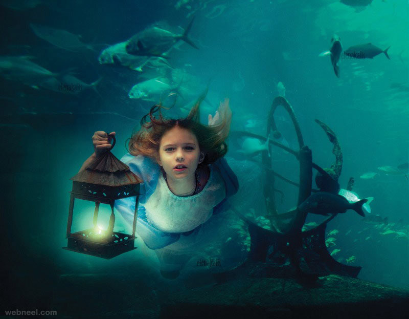 see all photography wildlife photography fashion photography black and    Underwater Photography Elena Kalis
