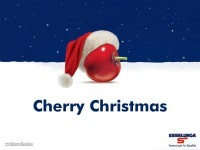 14-christmas-ads-esselunga-cherry