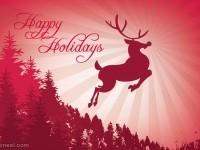 17-christmas-greeting-card