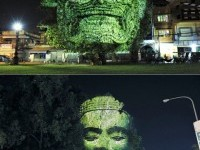 Creative Tree Art