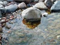 16-realistic-watercolor-painting-stanislaw-zoladz