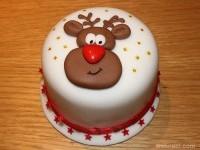 17-christmas-cake-decoration-idea