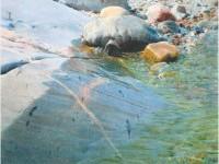 19-realistic-watercolor-painting-stanislaw-zoladz