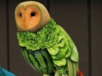vegetable art owl