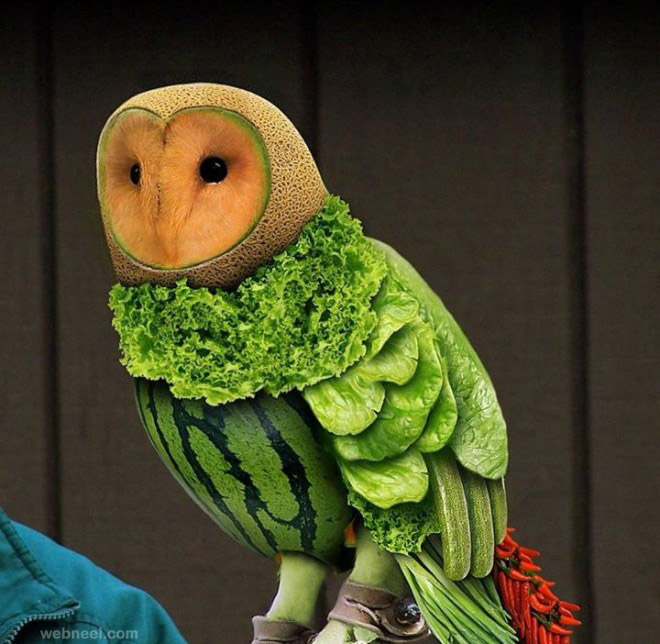 vegetable art owl