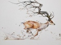 Deer Watercolor Painting by Luqman Reza Mulyono
