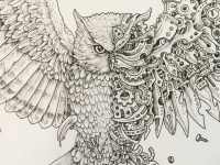 eagle-scribble-by-kerby-rosanes