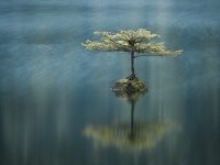 8-best-panoramic-photography-by-adam-gibbs
