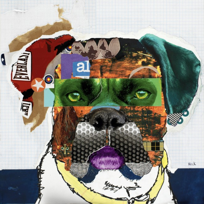 Rocky boxer dog collage