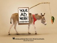 creative-advertisement (6)