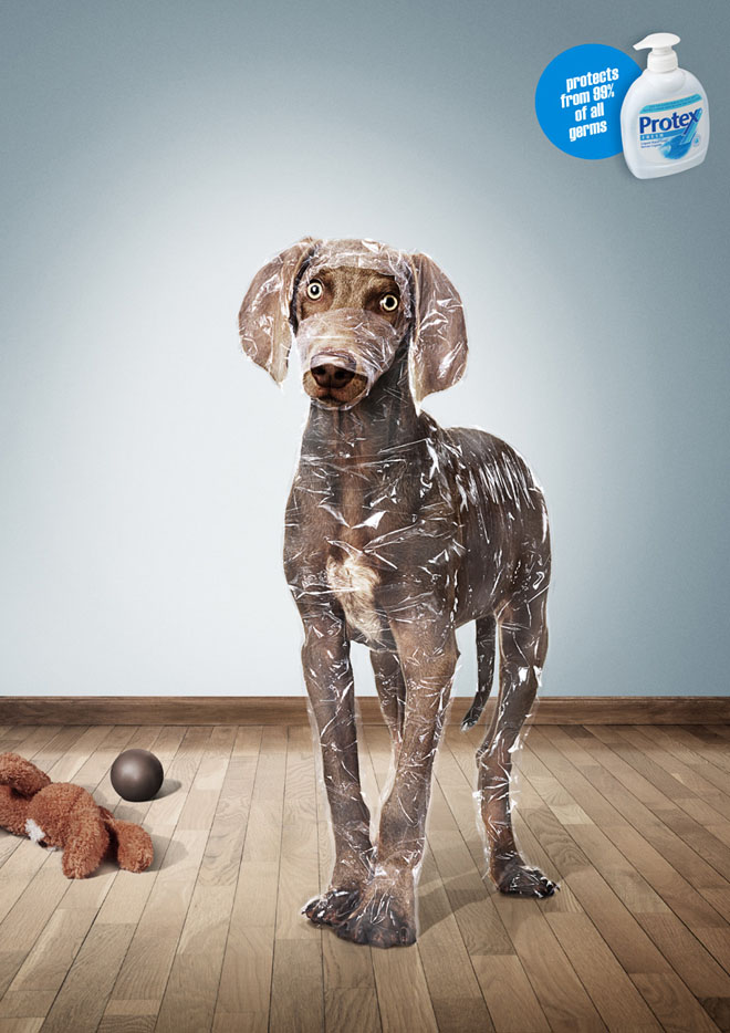 protex dog ads