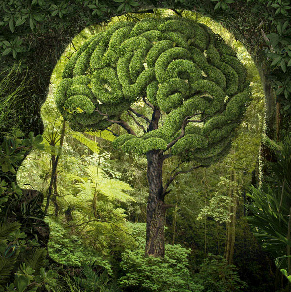 Surreal Illustration Photo Manipulation Igor Morski optical illusion dreams