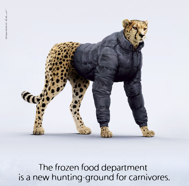 the frozen food the cheetah 25 Creative and Inspiring Animal Themed Print Advertisements for your inspiration